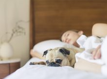 benefits of sleeping with air purifier